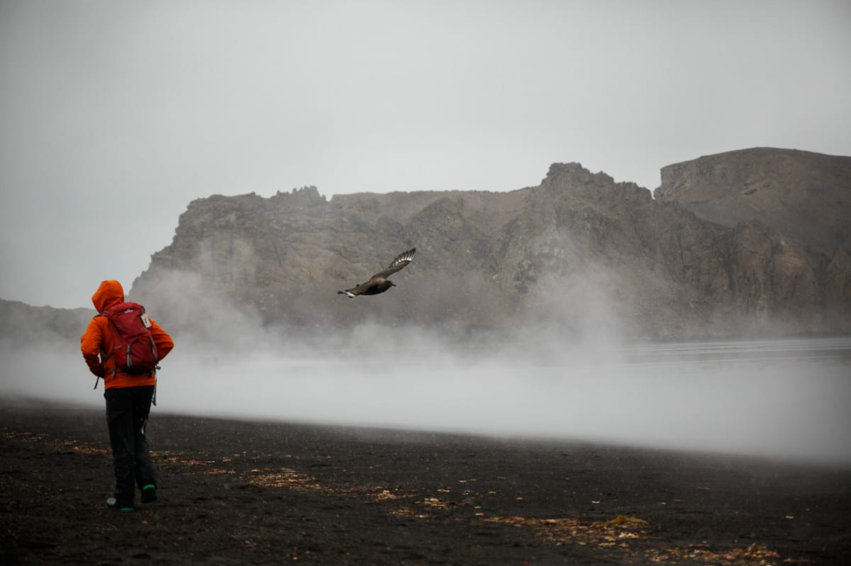 Geothermal waters of Deception Island