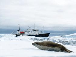 South Georgia & Antarctic Odyssey