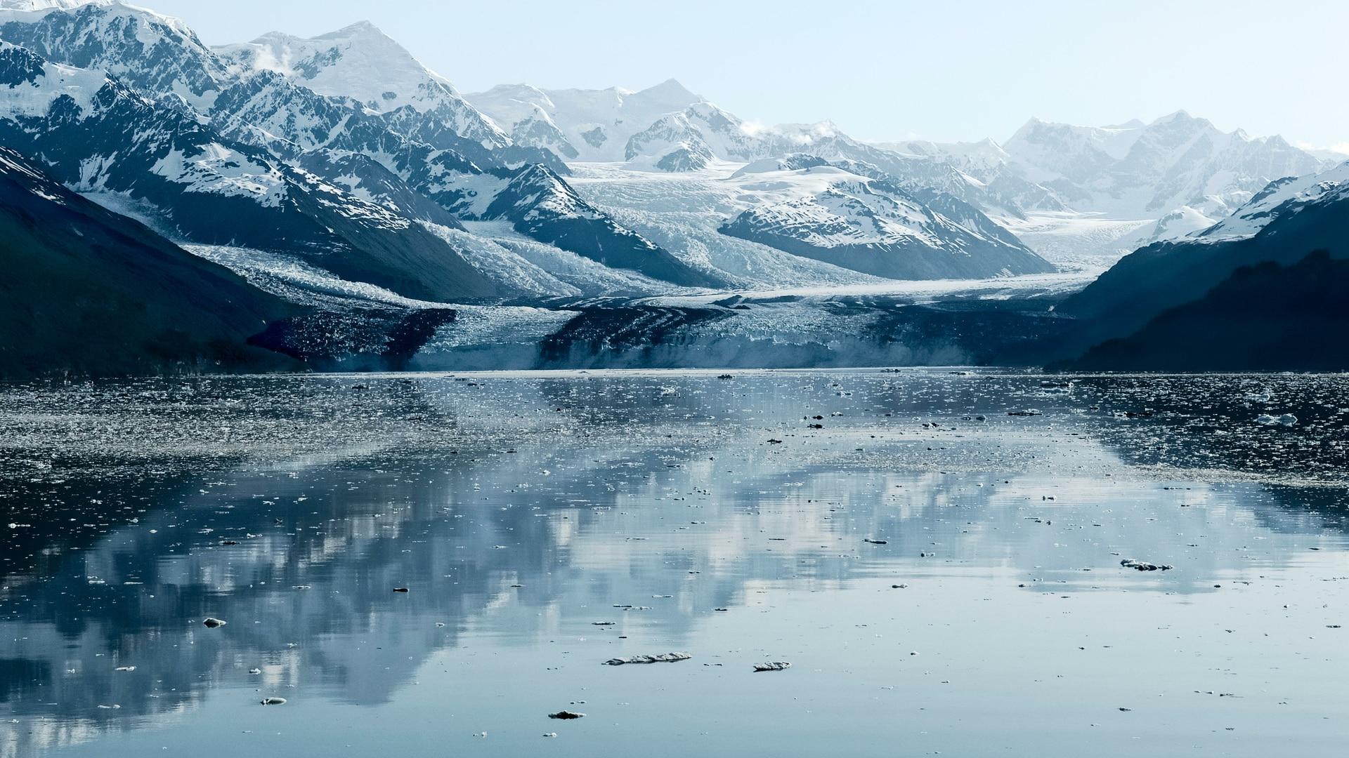 Harvard Glacier, College Fjord, Alaska