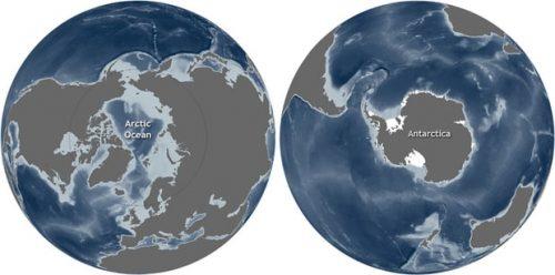 Arctic vs Antarctica